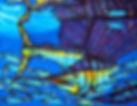 Jean-Baptiste Hand Painted silk of a sailfish