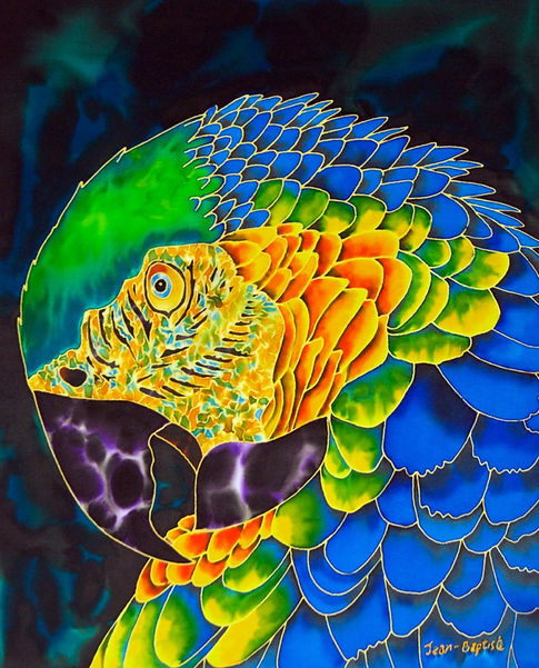Jean-Baptiste  Painting macaw