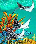jean-baptiste  Hand Painted silk art, snapper fish