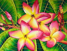 Jean-Baptiste silk painting of  frangipani  flowers
