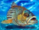 Jean-Baptiste silk painting of a striper fish