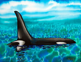 Jean-Baptiste silk painting of a Canadian killer whale