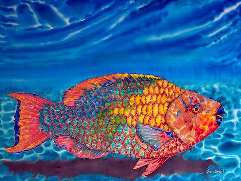 Jean-Baptiste.com Painting of a parrotfish