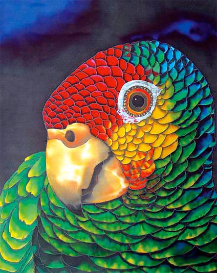 Jean-Baptiste Silk Painting of an amazon parrot