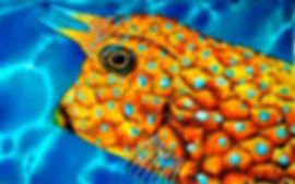 Jean-Baptiste.com Silk Painting of a cowfish