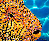 Jean-Baptiste silk painting of a puffer fish
