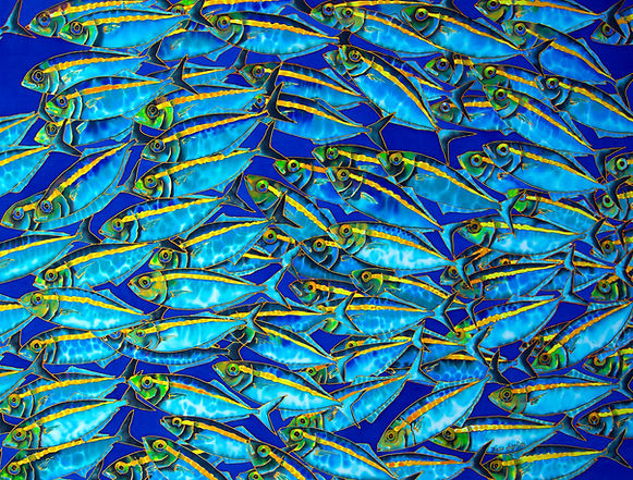 Jean-Baptiste  silk painting of gold banded scad