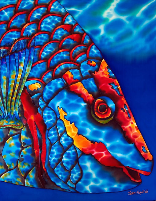 Jean-Baptiste Painting of a parrotfish