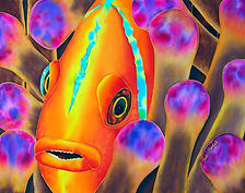 Jean-Baptiste silk painting of a clownfish