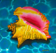 Jean-Baptiste silk painting of a Caribbean Conch Shell