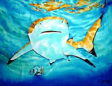 Jean-Baptiste silk painting of a blacktip shark