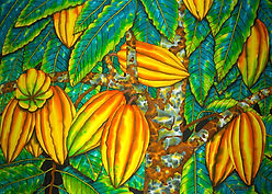 Jean-Baptiste Silk Painting of a cocoa tree in St. Lucia.