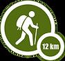 12km walk.png