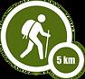 5km walk.png