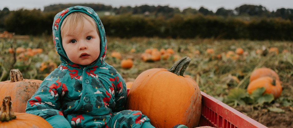 Family shoots at the Pumpkin farm. Celebrate the changing seasons with your family
