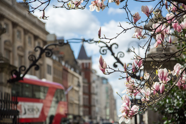 Photography in London