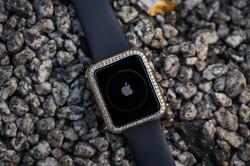 Diamond Apple Casing