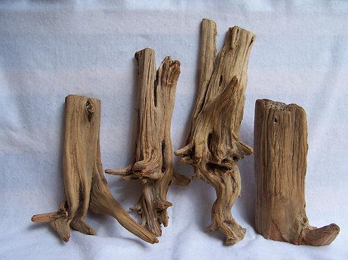 Cedar Driftwood