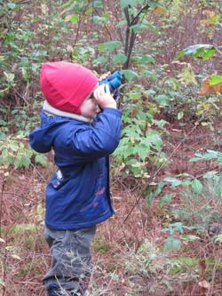 Observation de la nature