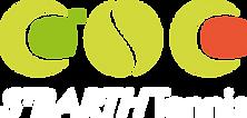 Logo_stbarthtennis_d%C3%83%C2%A9finitif_