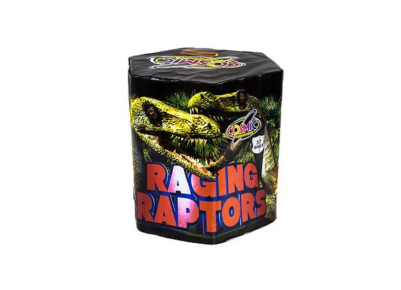 Raging Raptors - Large Cake