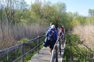 Escursioni guidate Lazio