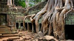 cambodia-picture_010418207_134
