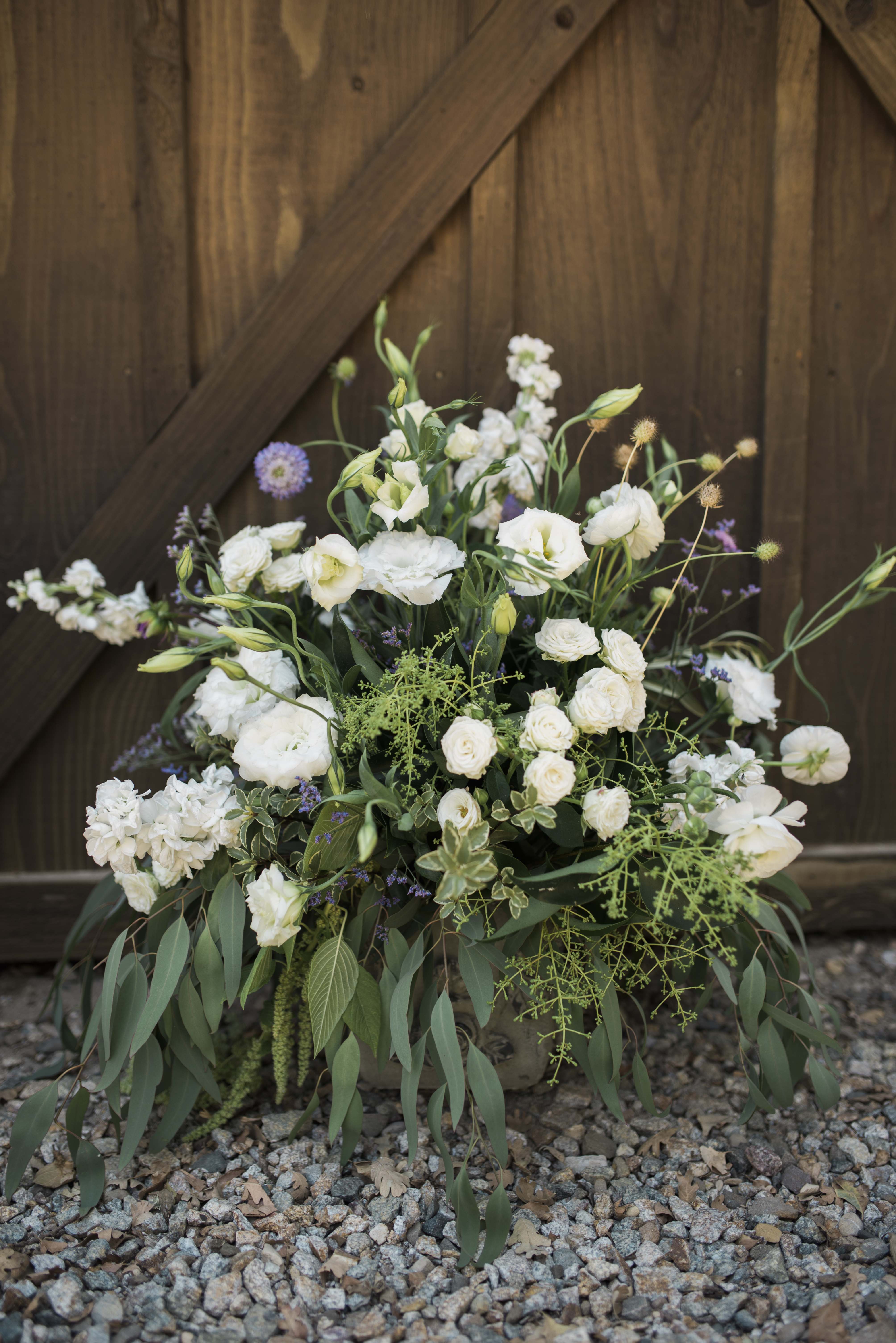 Loomis Ranch-Shannon McMillen Photography-15
