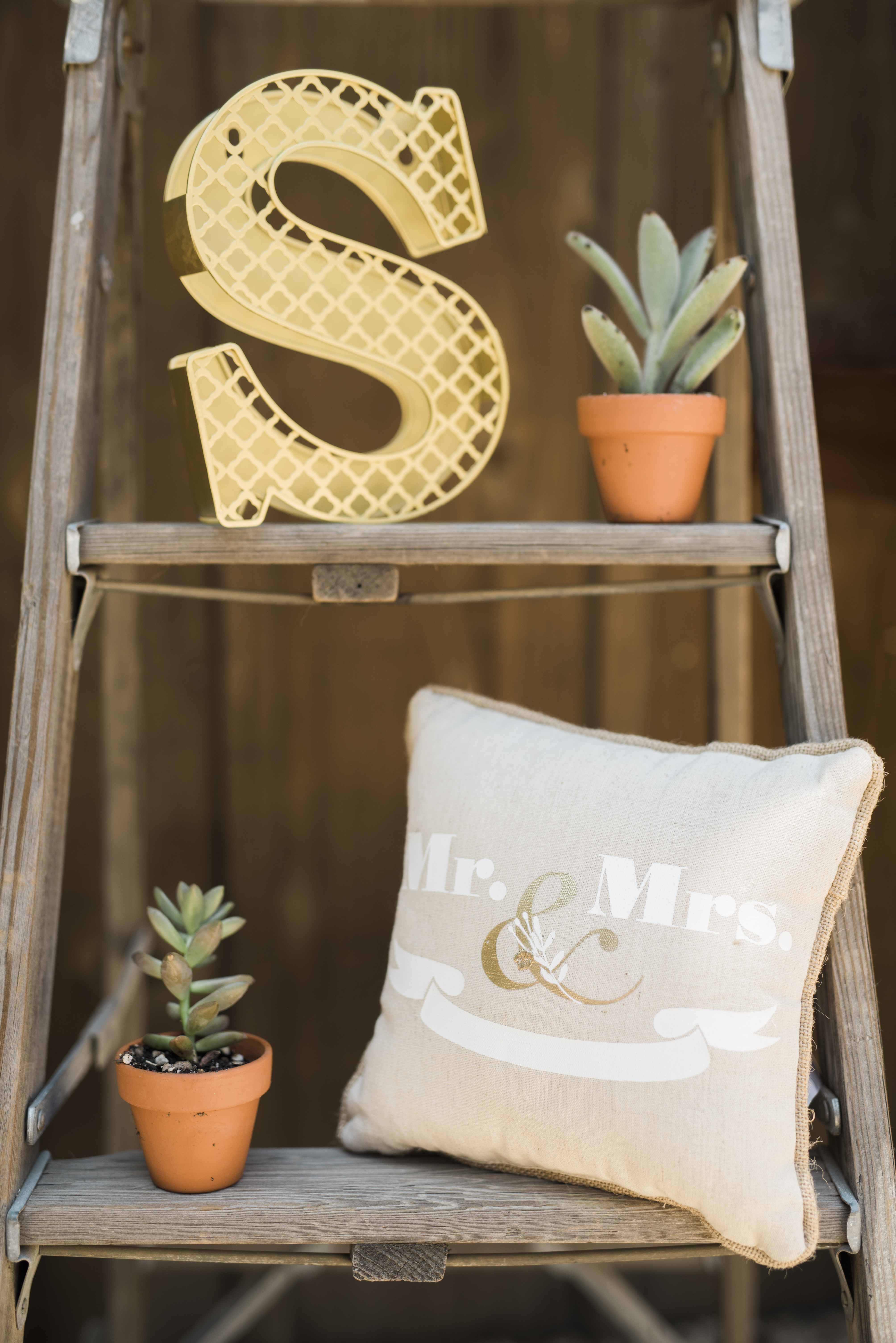 Loomis Ranch-Shannon McMillen Photography-16