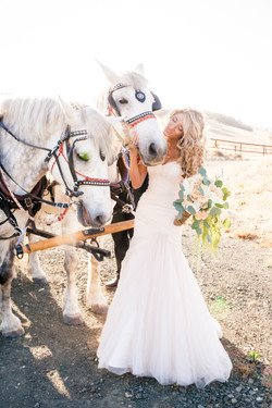 bride with horses