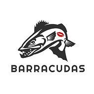 barracudas klein kus.jpg