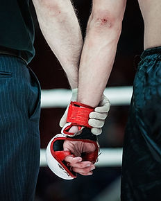 Boxing Glove Grip