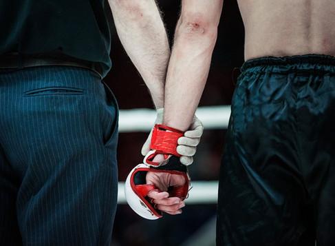 Türkiye'de Dövüş Sporları