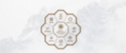 t_logo_manu1.jpg