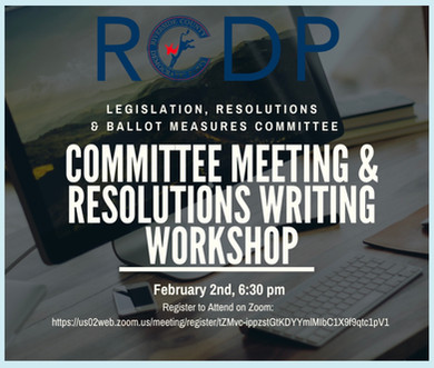 RCDP | Committee Meeting & Resolutions Writing Workshop