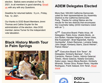 desDems Newsletter 2.10.21