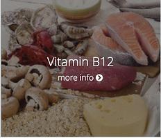 VitaminB12.png