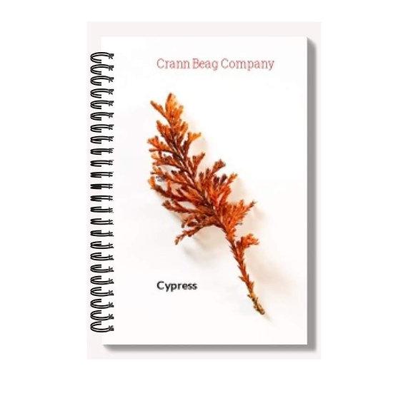 High Gloss A6 Notepad Autumn Cypress