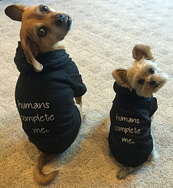 Humans Complete Me Doggy Shirts
