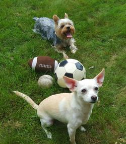 Brady & Rizzo