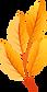 Orange_Autumn_Leaves_PNG_Clip_Art-2118.png