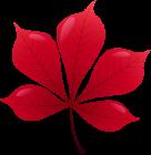 Red_Leaf_PNG_Clip_Art-2009.png