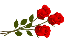 LOVE_GIFT_THREE_ROSE_Png_Co.png