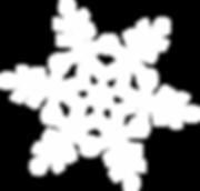 snowflakes_PNG7590.png