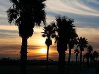 sunrise-.jpg