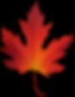 Autumn_Maple_Leaf_PNG_Clip_Art-1973.png