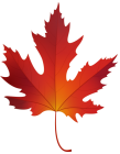 Autumn_Maple_Leaf_PNG_Clip_Art-1973.png