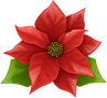 Christmas_Poinsettia_PNG_Clip_Art_Image.