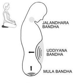Les Bases du Vinyasa - Fiche pratique : Bandhas
