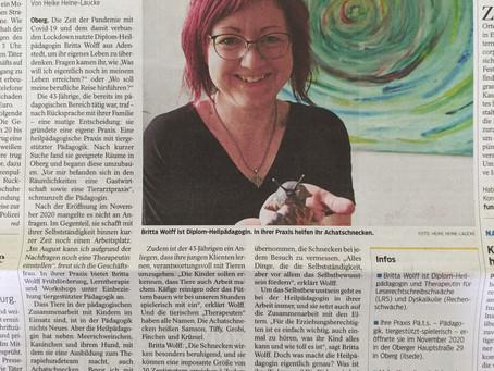 Artikel in der Braunschweiger Zeitung